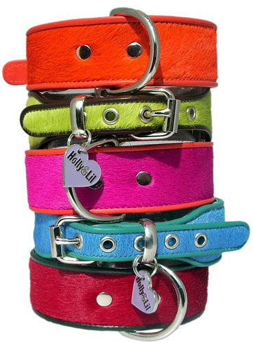 Everyday Dog Collars pink blue lime orange red - Holly & Lil Collars Handmade in Britain, Leather dog collars, leads & Dog harnesses.
